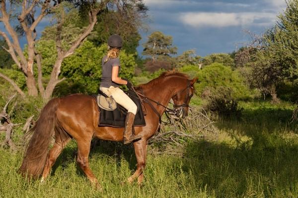 Unembeza horse-back safari